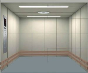 2000kg Freight Elevator for Goods with Painted Steel Finish pictures & photos