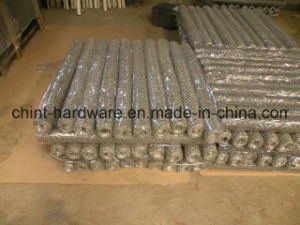 PVC Coated Hexagonal Wire Mesh for Chicken Coop Wire Mesh pictures & photos