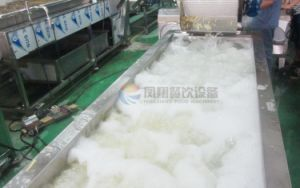 Industrial Potato Washing Peeling Slicing Cutting Rinsing Dewatering Processing Production Line pictures & photos