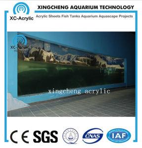 Customized Transparent Acrylic Aquarium Supplier Build Aquarium Project pictures & photos