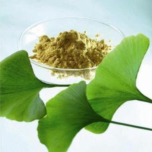 Buy Ginkgo Biloba Extract From China pictures & photos