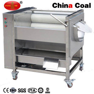 Large Capacity Root Brush Fruit and Vegetable Washer pictures & photos