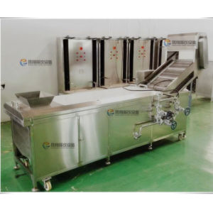 Vegetable Processing Blanching Blancher Machine in Warm Water with Ce Approved (PT-2000) pictures & photos