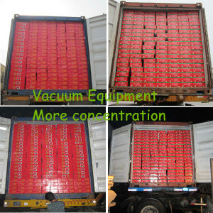 Concentrated Tomato Paste 830g Tins pictures & photos