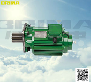 Brima Good Quality 1.5kw with Buffer Electric Crane Geared Motor (BM-200) pictures & photos