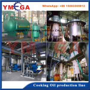 China Advanced Turkey Project of Soybean Oil Pressing Plant pictures & photos