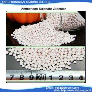 Ammonium Aluminium Sulphate Granular 15.6%-17% Swimming Pool Chemical pictures & photos