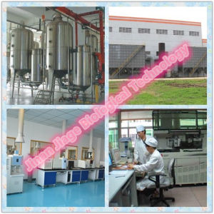 Legal Muscle Building Steroid Powder Tpp Testosterone Phenylpropionate pictures & photos