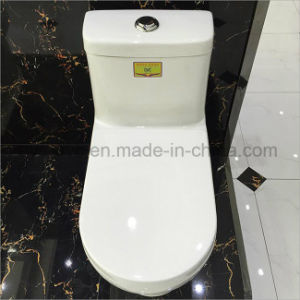 Good Quality Bathroom One Piece Toilet pictures & photos