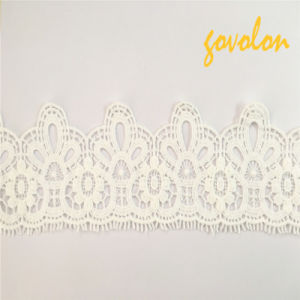 Lace Fabric/Garment Accessories/Embroidery/Cotton Lace pictures & photos