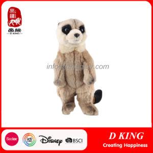 Custom Hot Sale Raccoon Plush Soft Stuffed Animal Toys pictures & photos