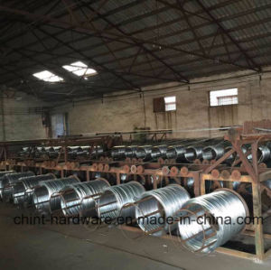 Electro Galvanized Iron Wire/China Supplier pictures & photos
