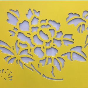 Aluminum Cladding with CNC Cutting for Interior & Exterior Decorative pictures & photos