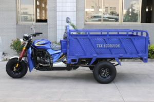 Heavy Loading Three Wheel Motorcycle/Cargo Tricycle/Tricycle pictures & photos