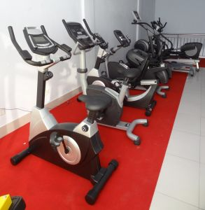 Self Generating Commercial Upright Bike (SK-C803) pictures & photos