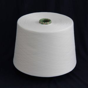 20/1 21/1 T50/R50 Polyester Viscose Blend Knitting Yarn pictures & photos