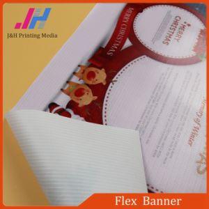 PVC Material Wear-Resistant Flex Banner pictures & photos