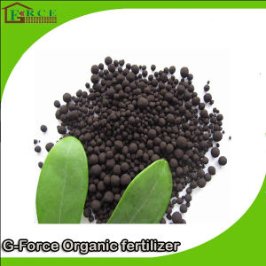 Soil Modified Nitro - Humic Acid Fertilizer Granules pictures & photos