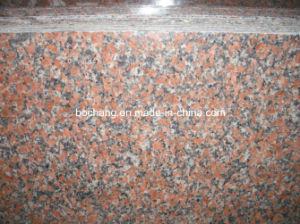 China Polished G562 Red Granite Slab pictures & photos