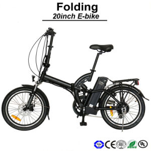 Lithium Battery Bike Electric Motorcycle E-Bike Electric Bicycle (TDN05Z) pictures & photos