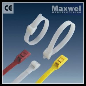 China Popular Double Lock Cable Tie pictures & photos
