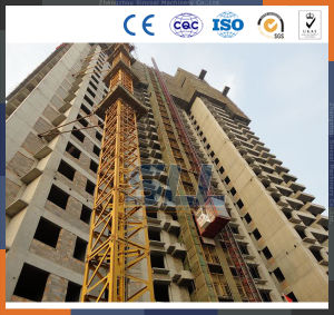 China Ladder Hoist/3 Ton Hoist Crane/Nippon Hoist Price pictures & photos