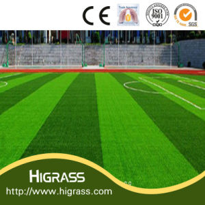 Wholesale Price Football/Soccer Artificial Grass pictures & photos