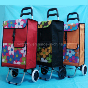 Customized New Portable Shopping Cart with Wire and Baseboard pictures & photos