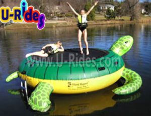 Turtle Inflatable Water Trampoline on Water Park pictures & photos
