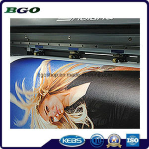 "Polyester Canvas Fabric Cotton Screen Printing (20""X24"" 3.8cm) pictures & photos"
