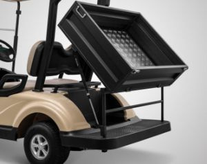 Cheap China Supplier New Condition 2 Seats Golf Cart with Utility Cargo Box pictures & photos