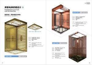 Sum Passenger Lift with Good Quality Hot Sail Competitive pictures & photos