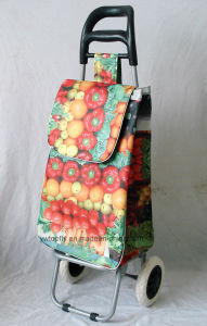 Daily Fruit Supermarket Cart Made of Polyester and Metal pictures & photos