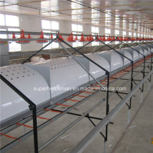 Automatic Chicken Laying Nest for Poultry Farming House pictures & photos