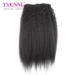 Kinky Straight Clip in Human Hair Extension pictures & photos