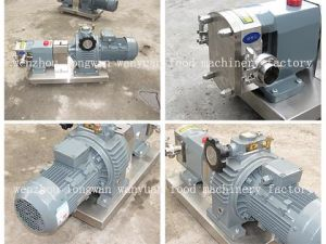 Stainless Steel Rotor Pump /Gear Pump pictures & photos