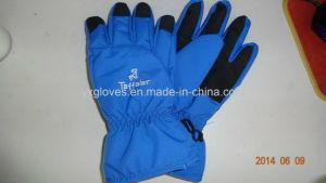 Ski Glove- Winter Glove-Sport Glove-Safety Glove-Waterproof Glove pictures & photos