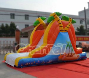 Hot Sale Inflatable Beach Slide Water Slide pictures & photos