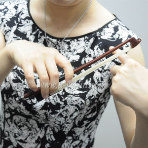 Patent Brazilwood Violin Bow for New Player to Practice (WV-D01) pictures & photos