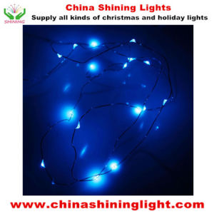 20LED Copper Wire LED Battery Lights in Varies Colors pictures & photos