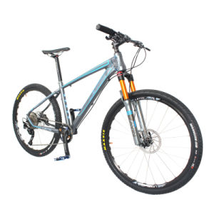 Best Hard Trail Mountain Bike for Trail Riding pictures & photos