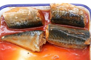 Canned Sardine in Tomato Sauce pictures & photos