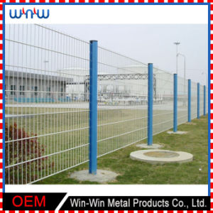 China Supplies Temporary Metal Wire Wrought Iron White Picket Fence pictures & photos