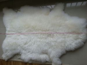 High Quality Australia Sheepskin Wholesale pictures & photos