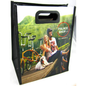 Eco Non Woven Customized Shopping Bag with Lamination