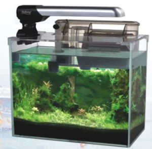3017 Ultra Clear Aquarium Glass Fish Tank