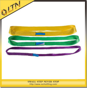 Polyester Endless Webbing Sling (NHWS-B) pictures & photos