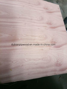 Bb/Bb BB/CC Okoume Plywood (For Packing and Furniture application) pictures & photos