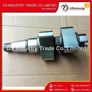 Diesel Engine Parts Fuel Pump Forging Camshaft 3330991 pictures & photos