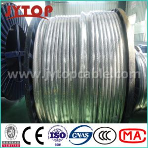 AAC Conductor All Aluminum Conductor 70mm 185mm DIN pictures & photos